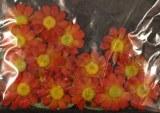 Taªtes de fleurs Paquerettes, 2,0 cm a¸, sct.-LS 24 fleurs + 6 feuilles, orange/rouge vin