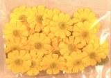 Taªtes de fleurs Paquerettes, 2,0 cm a¸, sct.-LS 24 fleurs + 6 feuilles, jaune